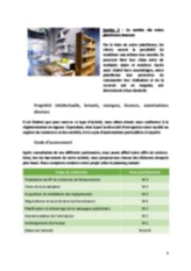 Business Plan Magasin-decoration Page 5