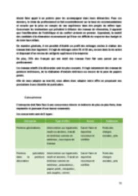 Business Plan Peintre-en-batiment Page 11