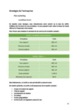Business Plan Peintre-en-batiment Page 13