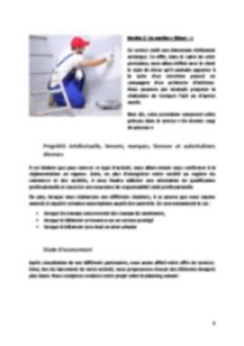 Business Plan Peintre-en-batiment Page 6