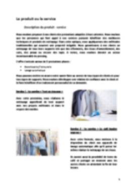 Business Plan Pressing Page 5