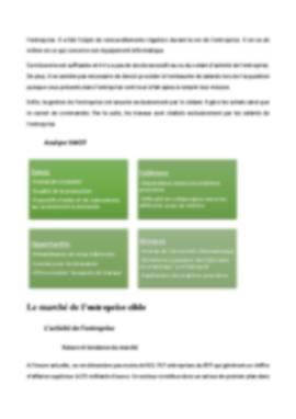 Business Plan Reprise-entreprise Page 8