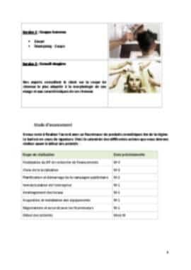 Business Plan Salon-de-coiffure Page 5