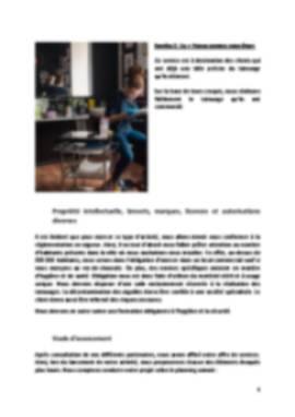 Business Plan Salon-de-tatouage Page 6