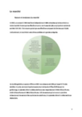 Business Plan Securite Page 7
