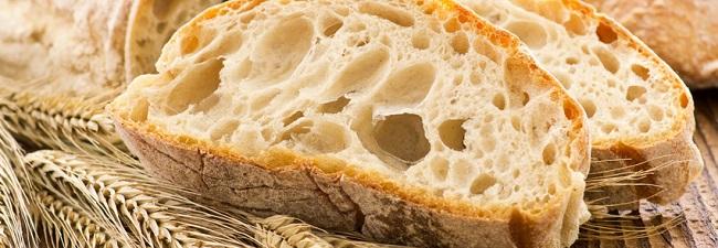 modele de business plan boulangerie